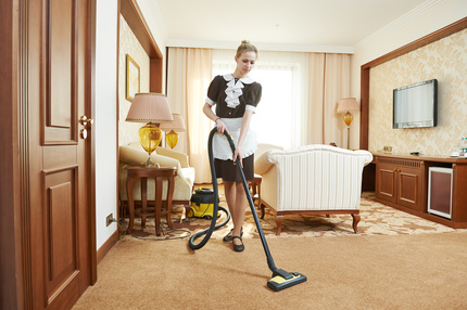 carpet cleaner north shore auckland